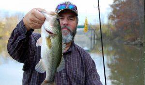 Bass Fishing Lures Weedwings | Panther Martin