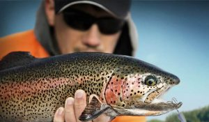 Wild Trout Lures | Panther Martin