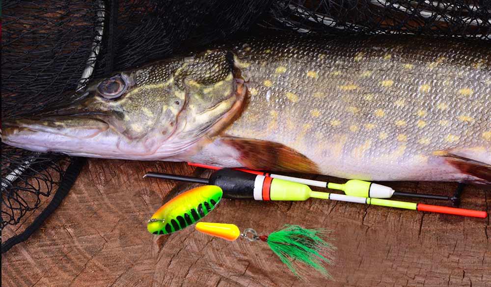 Pike and Musky Fishing Lures